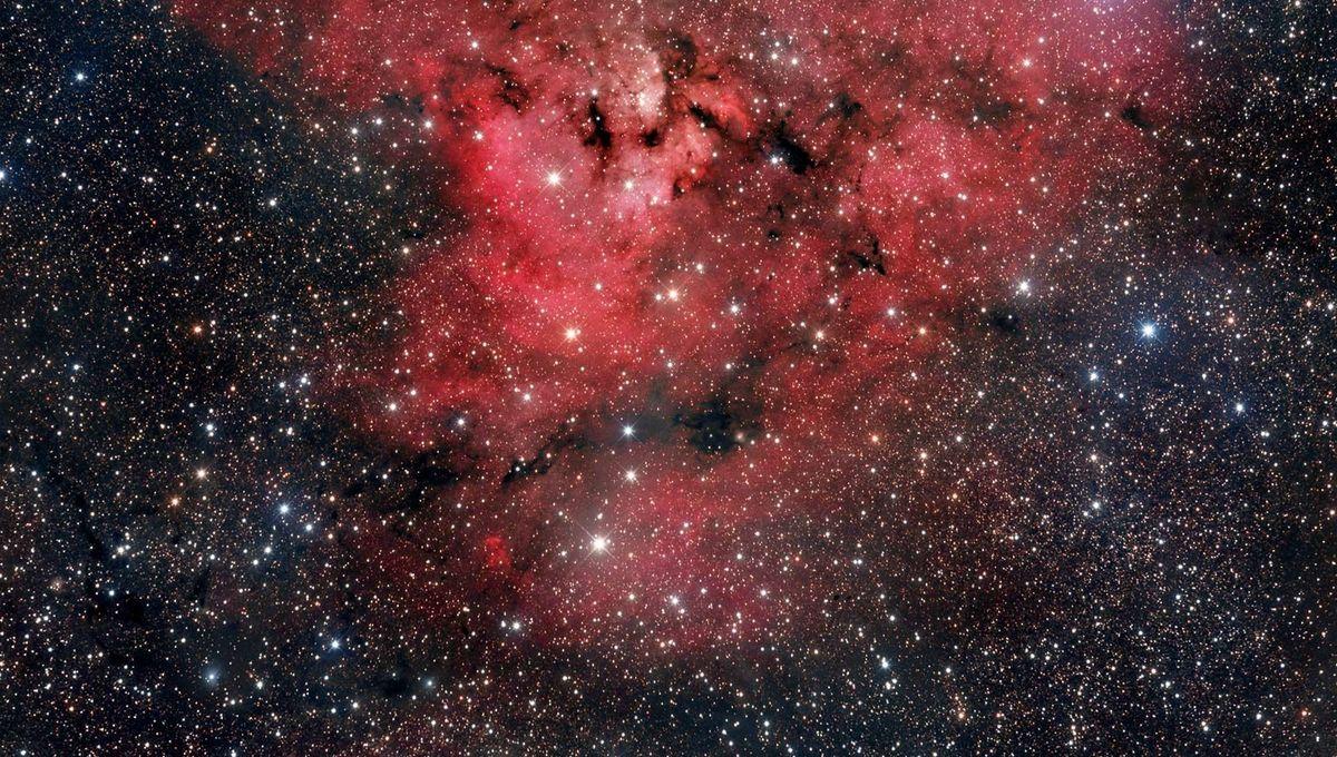 NGC 7822, aka The Question Mark Nebula. Credit: Adam Block /Steward Observatory/University of Arizona