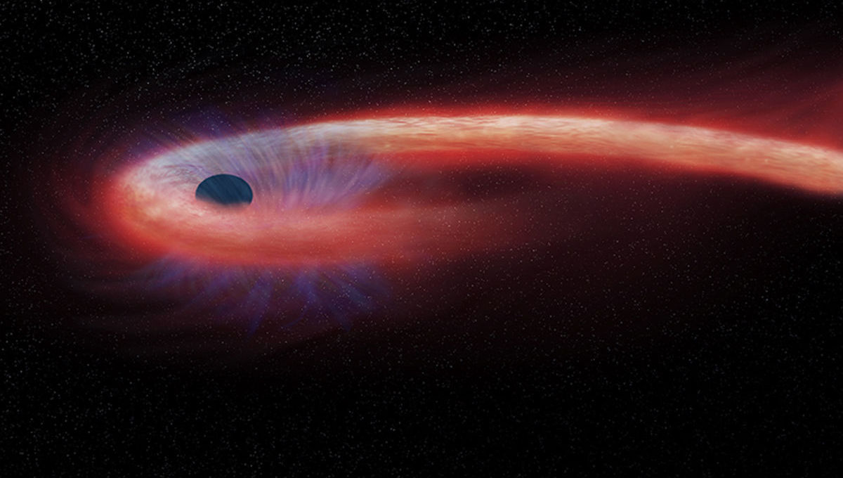 Artwork depicting a black hole eating a star, the ferocious tides tearing the star apart. Credit: NASA/CXC/M.Weiss