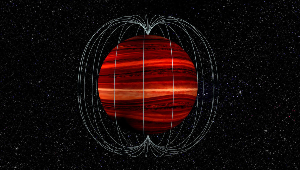 Artwork depicting a brown dwarf and its magnetic field. Credit: Bill Saxton, NRAO/AUI/NSF