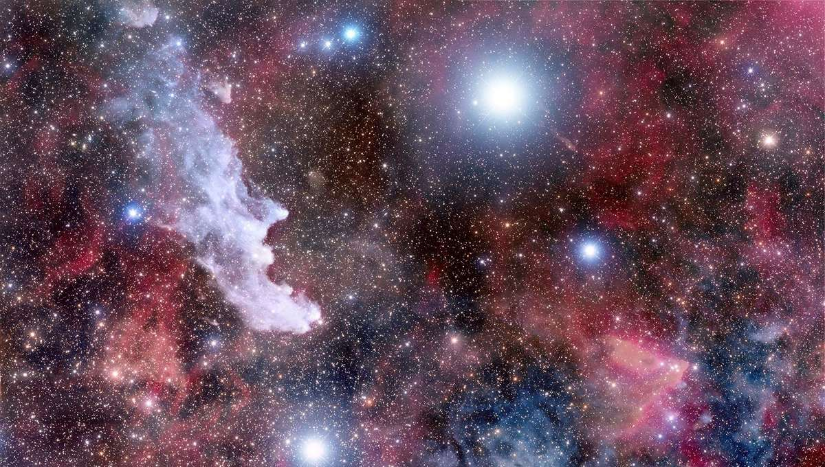 Rigel (top center) is the brightest star in Orion, but in this very deep exposure there is a lot more to see. Credit: Adam Block /Steward Observatory/University of Arizona