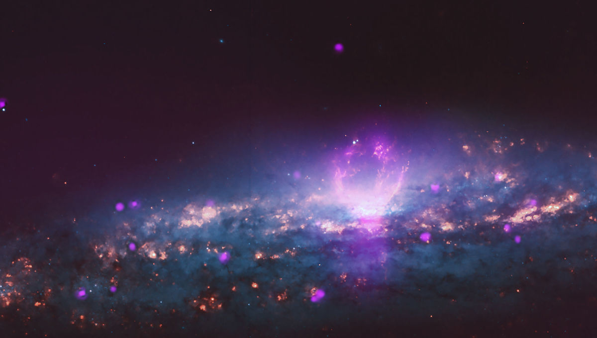 The galaxy NGC 3079 shows stars seen by Hubble (orange and blue) as well as X-rays (purple) by the Chandra X-ray Observatory. Credit: X-ray: NASA/CXC/University of Michigan/J-T Li et al.; Optical: NASA/STScI