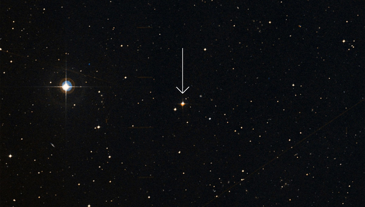 Ross 573 (arrowed), a red dwarf star, may be the home for the second known interstellar visitor to our solar system, the comet 2I/Borisov. Credit: SIMBAD/Aladin/DSS