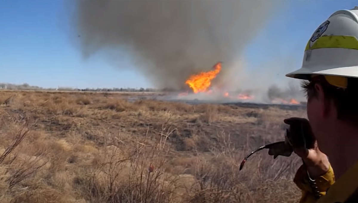 A fire tornado (really a fire dust devil) forms during a proscribed burn in Denver, Colorado in 2014. Credit: Thomas Rogers, from the video