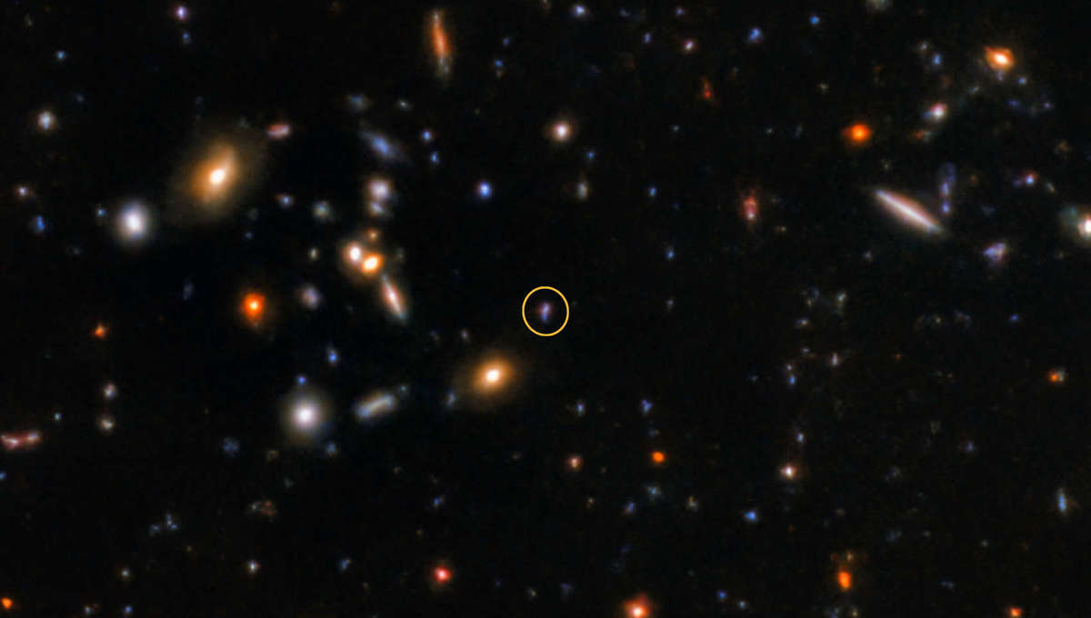 An image of the short gamma-ray burst GRB 181123B's host galaxy (circled) taken by the Gemini Observatory.