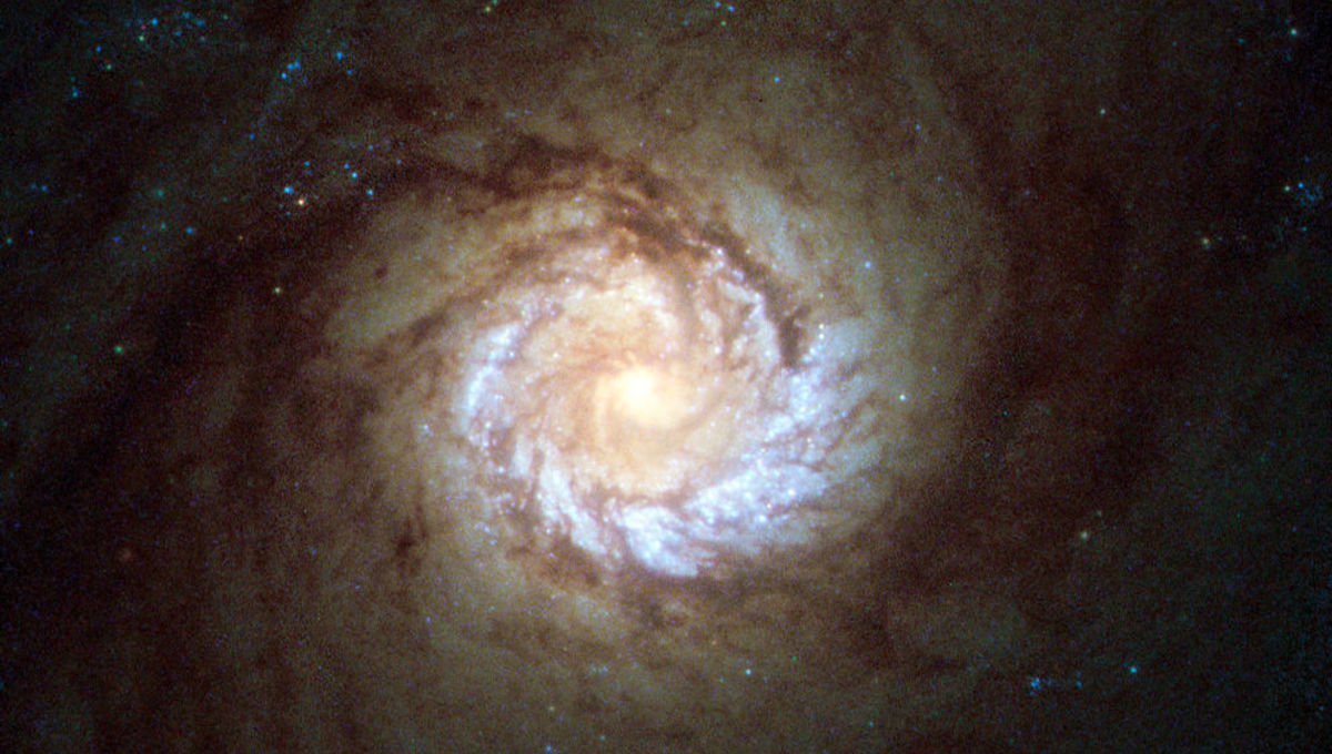 The center of the galaxy M61 shows the spiral pattern goes right down to the core. Credit: ESA/Hubble & NASA, Acknowledgement: Det58