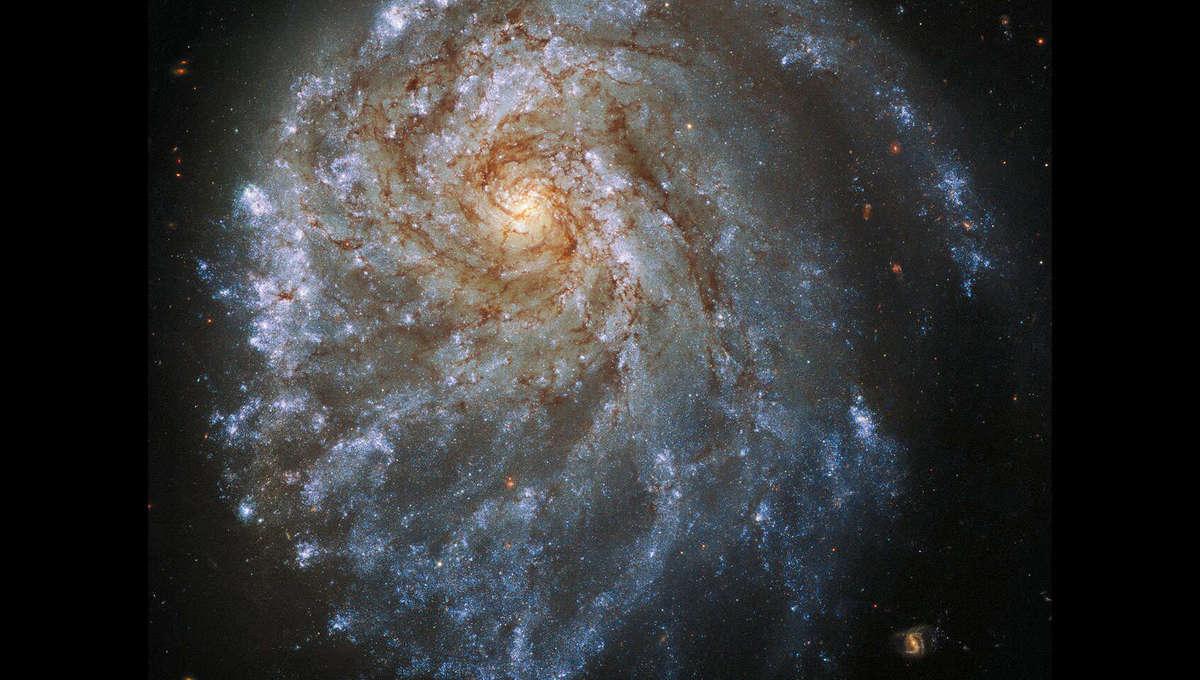 Phil Plait Bad Astronomy hst_ngc2276