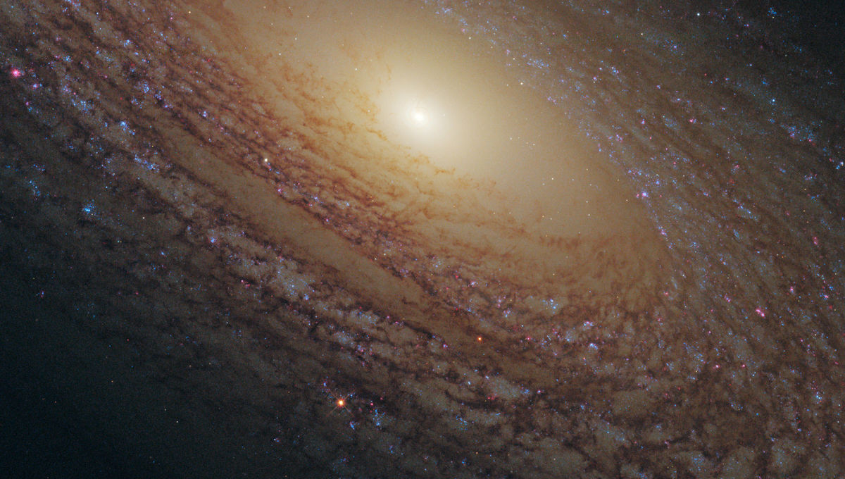 The flocculent spiral galaxy NGC 2841. Credit: NASA, ESA and the Hubble Heritage (STScI/AURA)-ESA/Hubble Collaboration