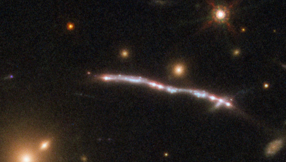 Detail of one Starburst Arc shows several bright knots; each is an image of the same region of the lensed galaxy replicated through the lensing process. Credit: ESA/Hubble, NASA, Rivera-Thorsen et al.
