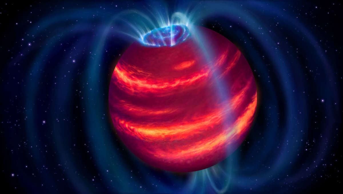 Artwork depicting a magnetic brown dwarf; particles moving along the field lines hit the atmosphere and cause it to glow with an aurora. Credit: ASTRON/Danielle Futselaar