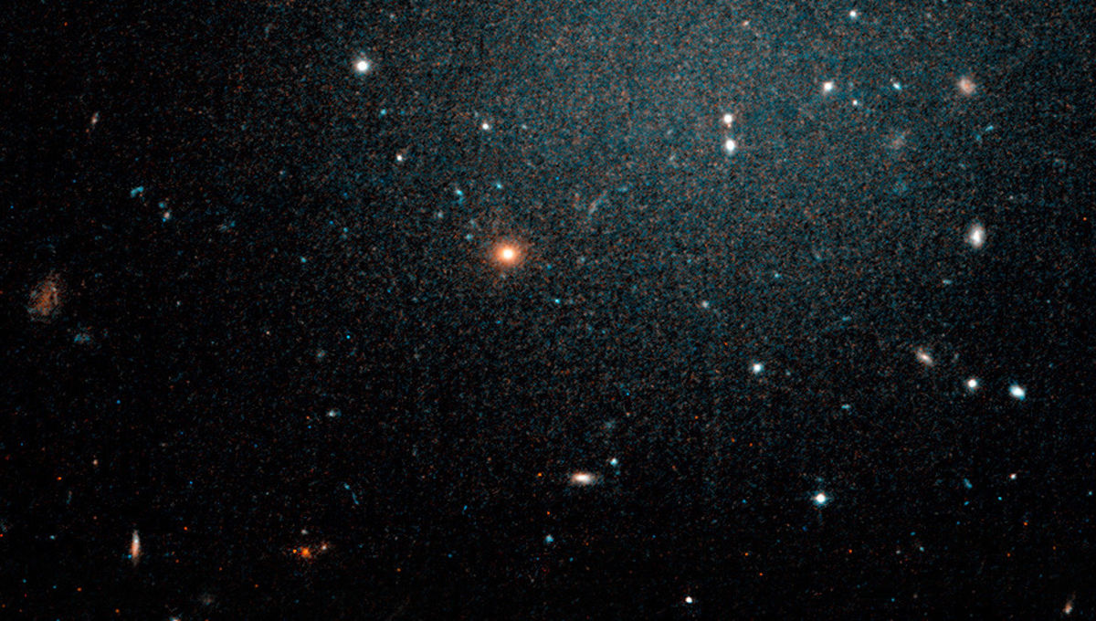 This Hubble Space Telescope image of NGC 1052-DF2 shows it as a faint bluish glow, and we see far more distant background galaxies right through it. Credit: P. van Dokkum; R. Abraham; STScI, Space Telescope Science Institute