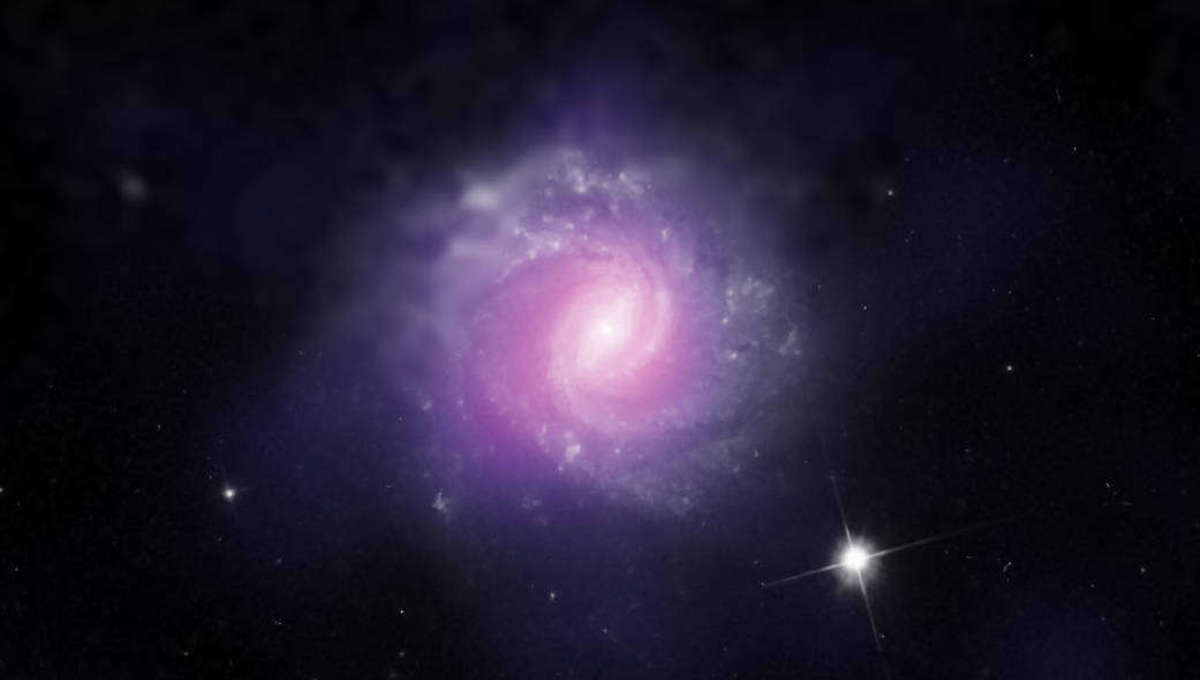 Liz Galaxy IC 3639