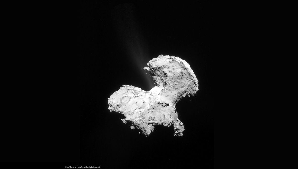 The comet 67/P Churyumov-Gerasimenko seen by the Rosetta spacecraft in September 2014. Note the jet of gas coming from the neck area. Credit:ESA / Rosetta / NavCam / Emily Lakdawalla