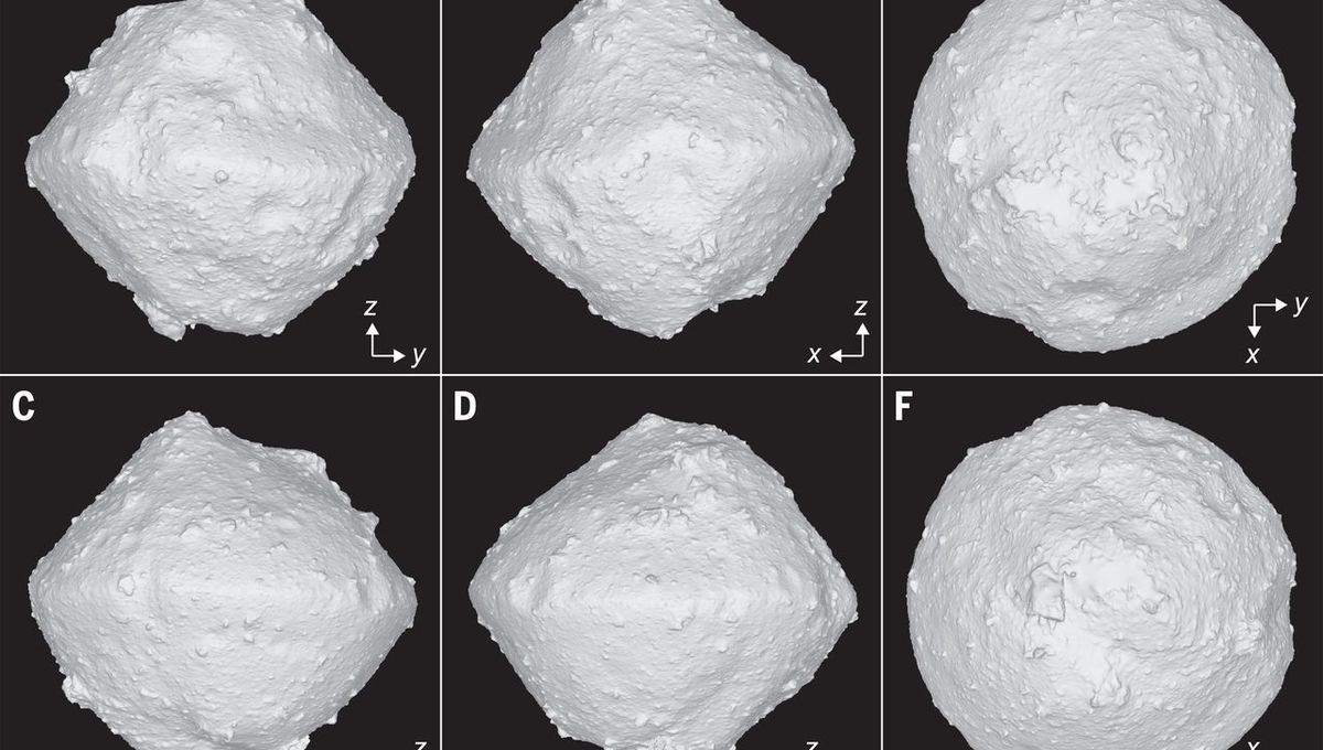 A 3D model of the surface of the asteroid Ryugu created from Hayabusa2 data. Note that in frame A, the rock Catafo Saxum sits right in the center, marking the meridian (0° longitude) of Ryugu. Credit: Watanabe et al.