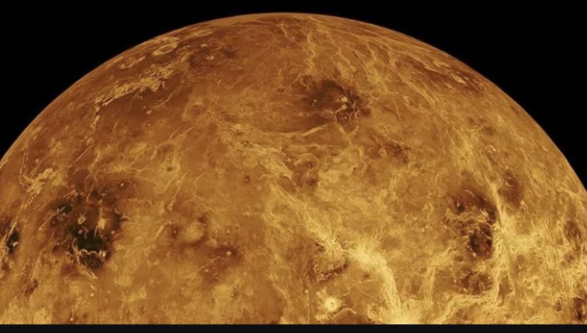 Life on Venus