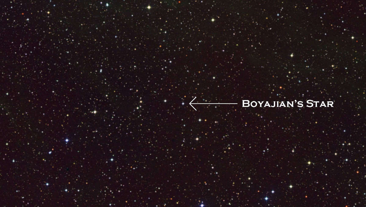 Boyajian's Star (arrowed), which undergoes severe drops in brightness for reasons yet unknown. Credit: NASA/GSFC/Skyview