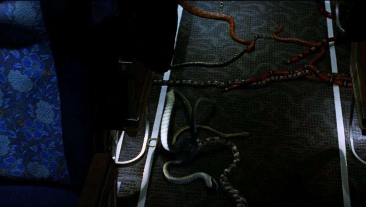 Snakes on a Plane Still