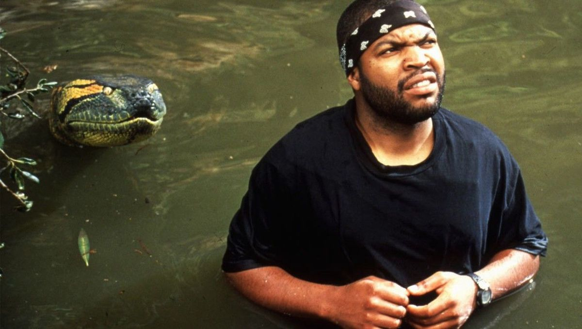 Anaconda is about to eat Ice Cube