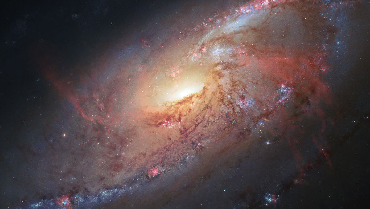 """The inner disk of the spiral galaxy M 106 shows a pair of """"anomalous arms"""", actually gas heated by emission from the central black hole. Credit: NASA, ESA, the Hubble Heritage Team (STScI/AURA), and R. Gendler (for the Hubble Heritage Team). Acknowledgmen"""