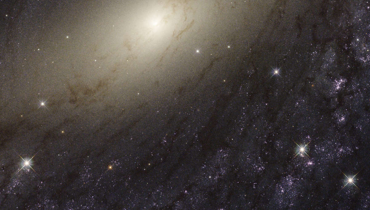 The central region of the gorgeous spiral galaxy NGC 6744, imaged using the Hubble Space Telescope. Credit: NASA,ESA, and the LEGUS team