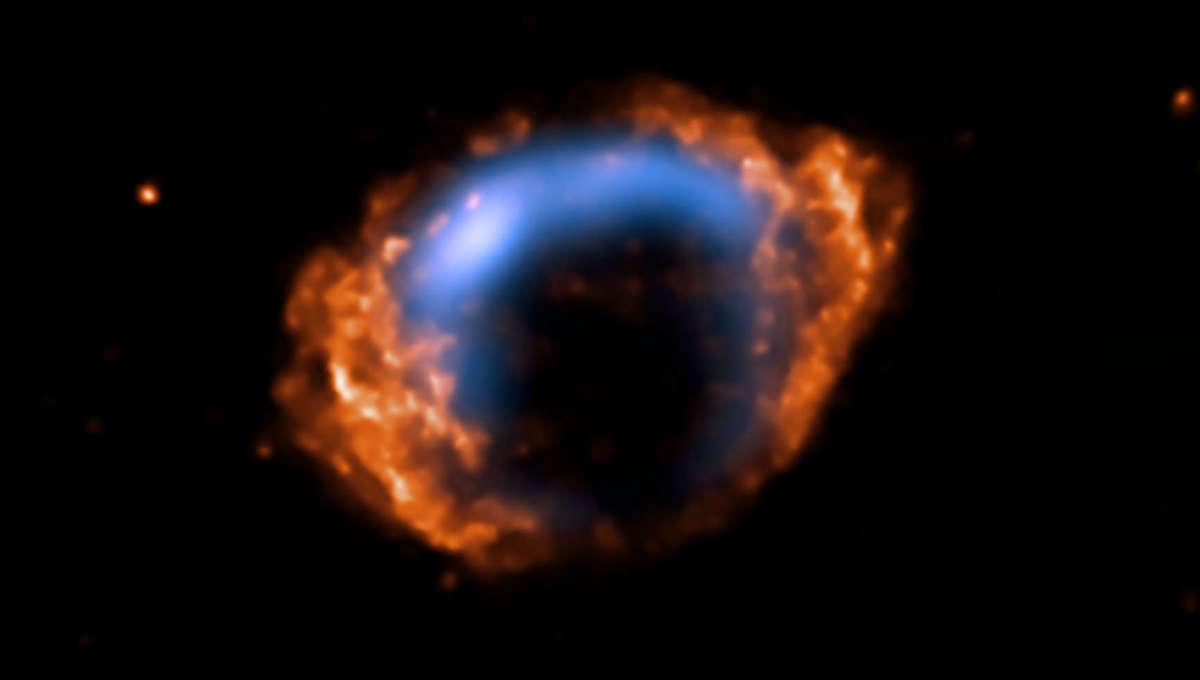 Phil Plait Bad Astronomy vla_chandra_g1.9+0.3