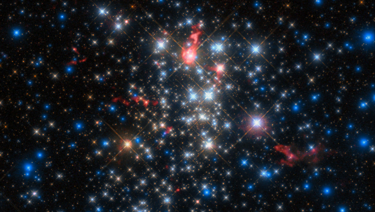 Westerlund-1, one of the most massive star clusters in the Milky Way. ALMA observations (red), superposed on a Hubble image, indicate several of the stars are enshrouded in warm dust. Credit: ESO/D. Fenech et al.; ALMA (ESO/NAOJ/NRAO)