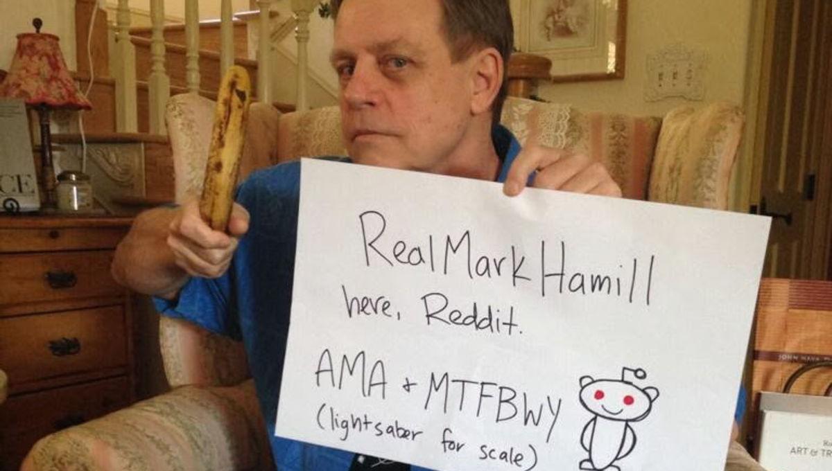 Hamill-Reddit.jpg