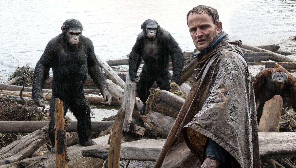 Human-meets-Apes.jpg