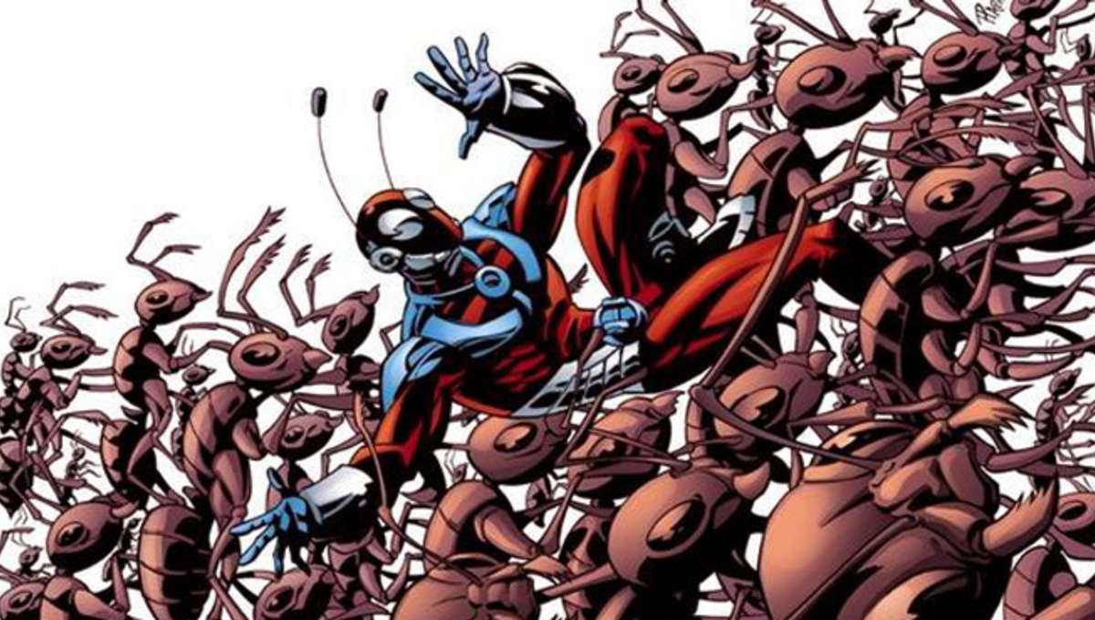 Ant-Man-2.jpg