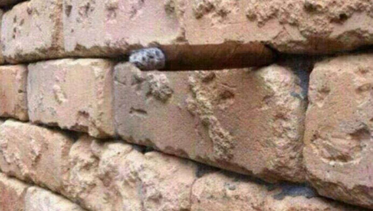 cigar_illusion.jpg