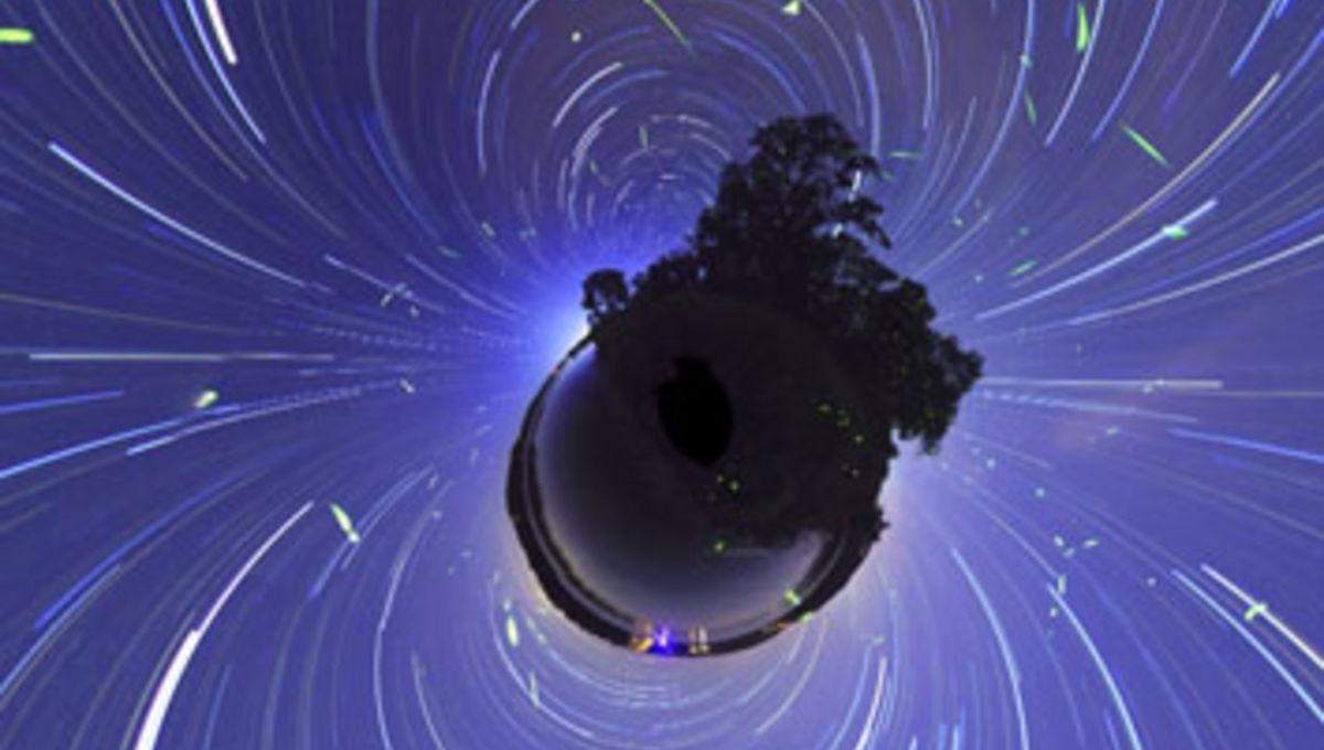 fireflies_screengrab.jpg