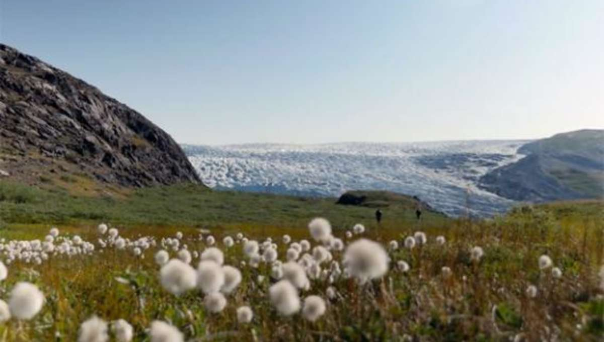 greening_earth_arctic.jpg.CROP.rectangle-large.jpg