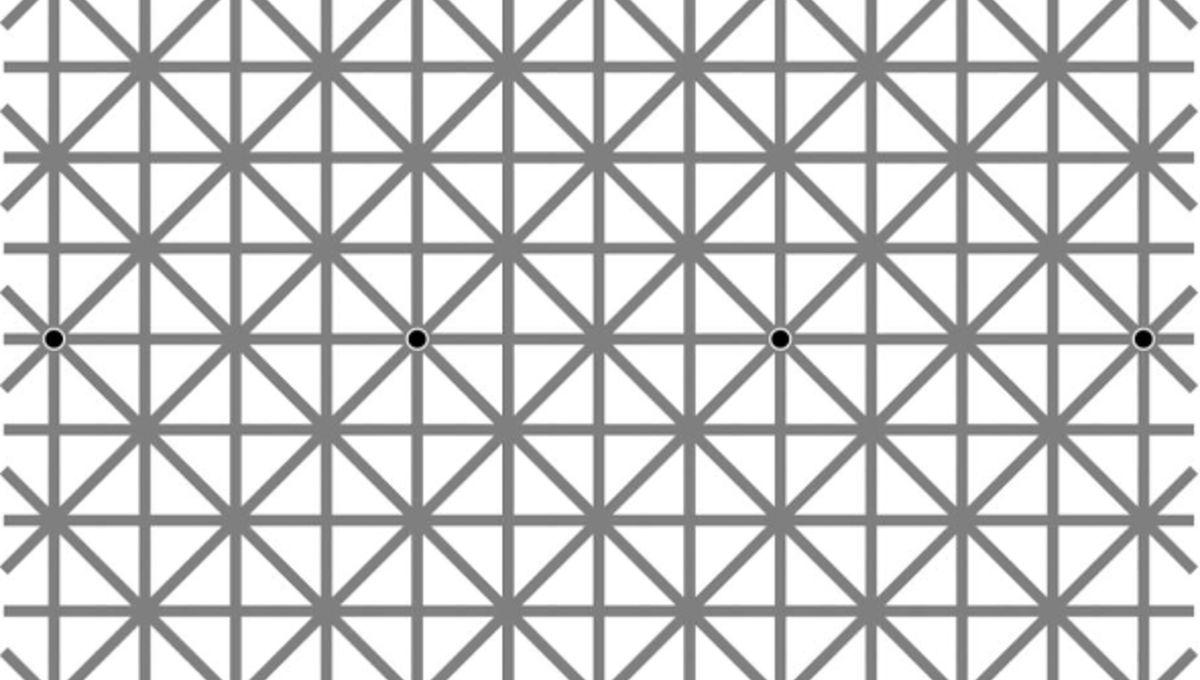 kitaoka_gridillusion_0.jpg