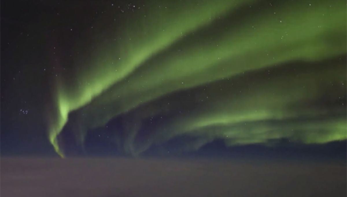 paulwilliams_aurora_0.jpg