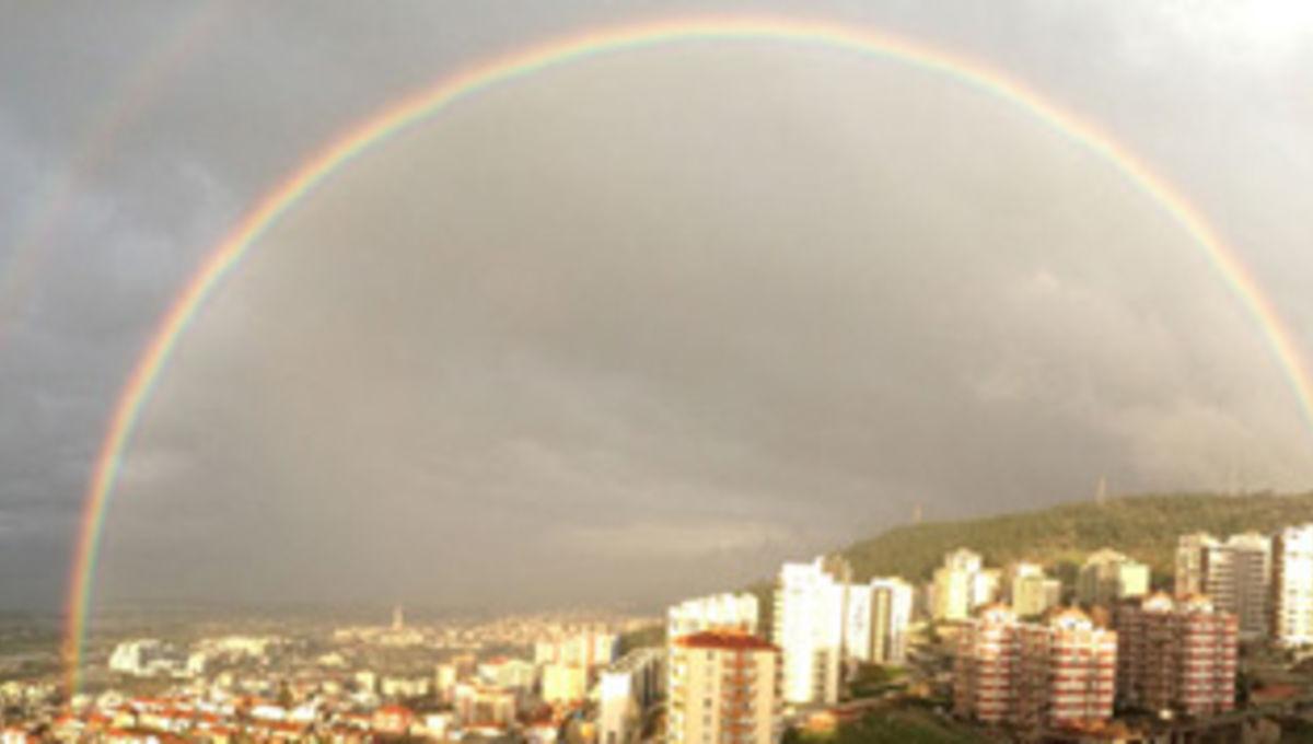 ulger_rainbow_354.jpg