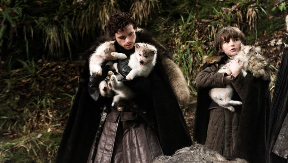 Game of Thrones dog Odin loses cancer battle