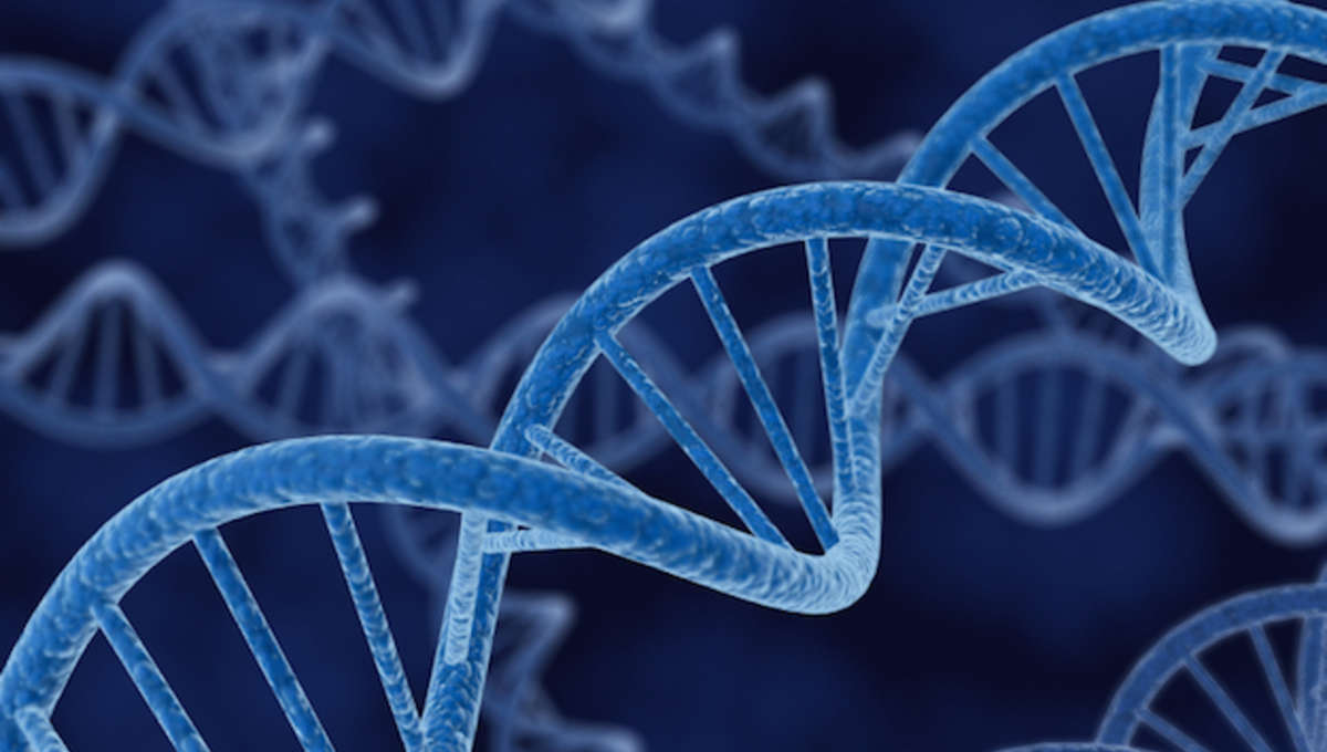 DNAstrand.jpg