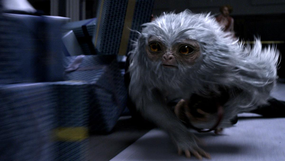 fantastic-beasts-movie-trailers-demiguise.jpg