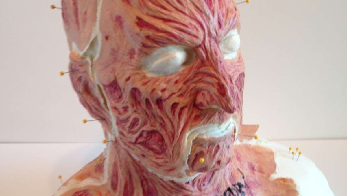 Freddy-001-620x400.jpg