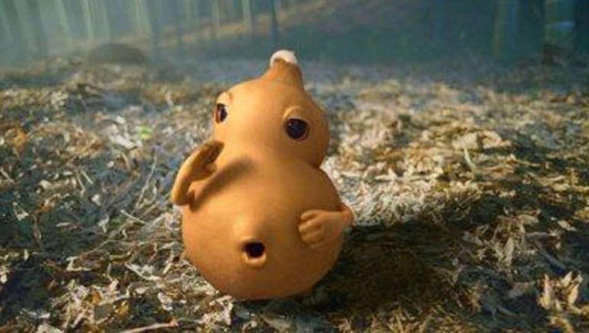Gourd1.jpg