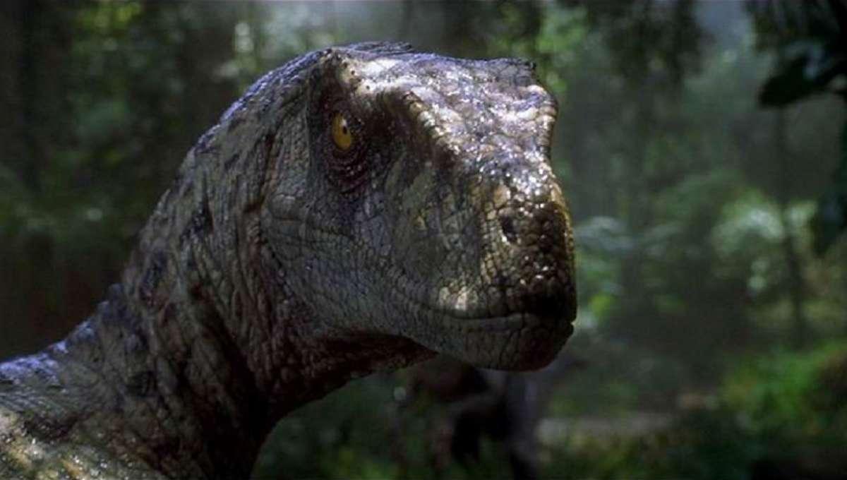 jurassic-park-velociraptor.png