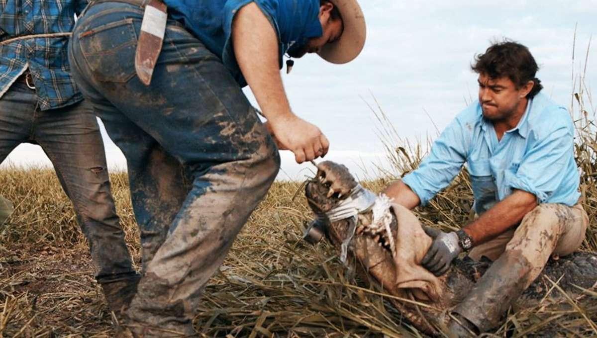 OutbackWrangler.jpg