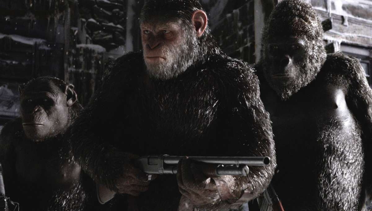 War-for-the-Planet-of-the-Apes-Caesar-holding-a-gun.jpg