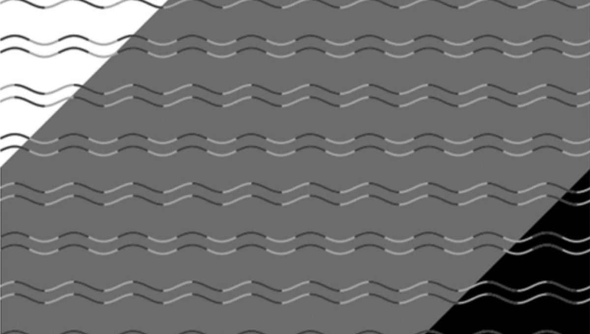 An optical illusion created by Kohske Takahashi: All the lines are smoothly curving sine waves, but their shading and contrast with the background makes them appear to be sharp zigzags. Credit: Kohske Takahashi