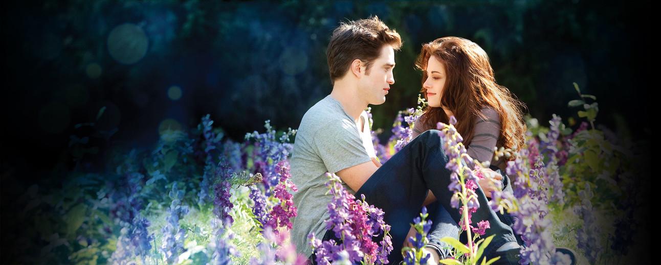 Twilight Header.jpg