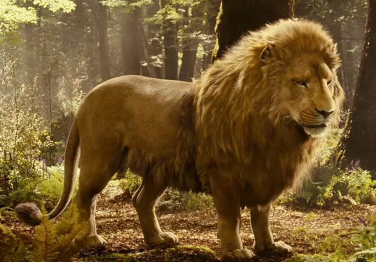 aslan-pc.jpg