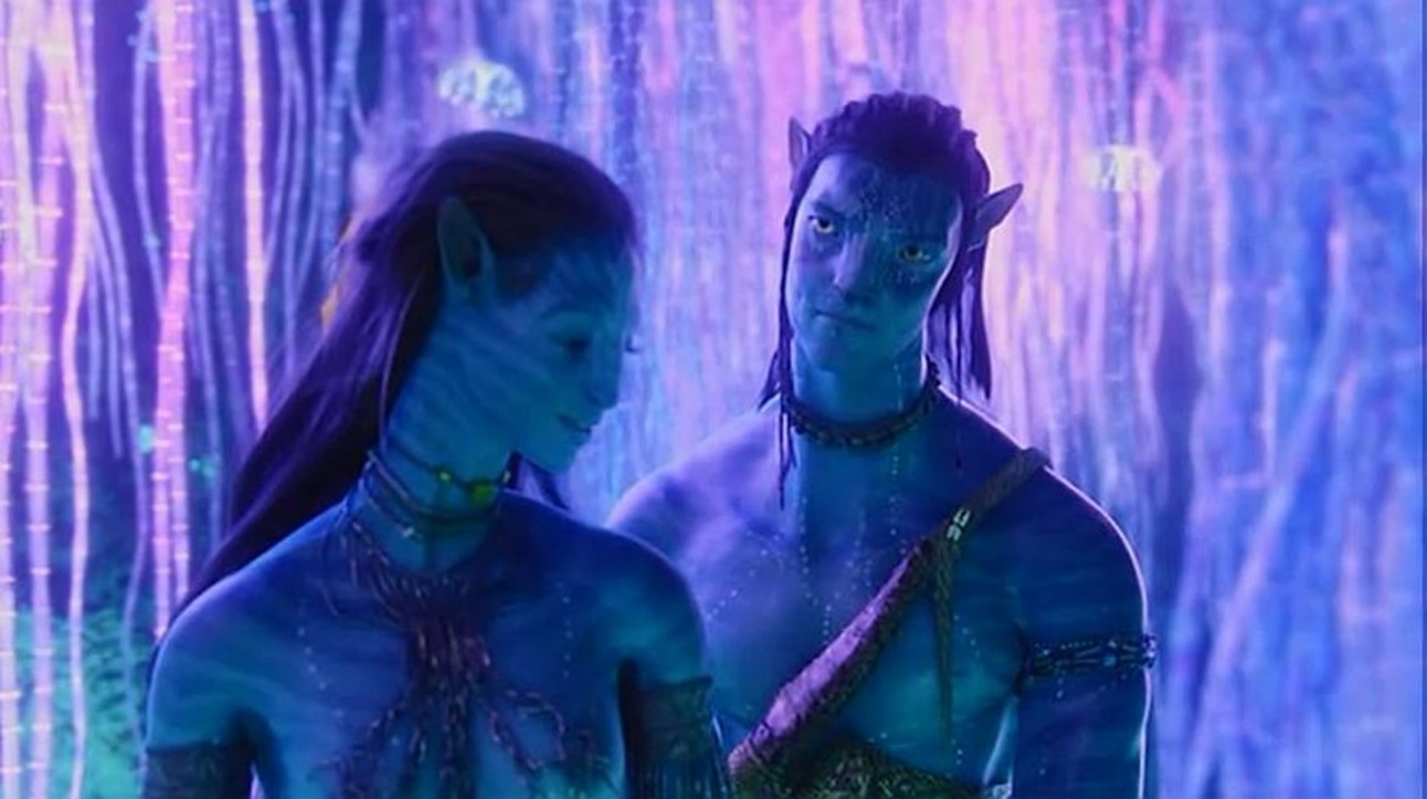 Neytiri_and_Jake.jpg