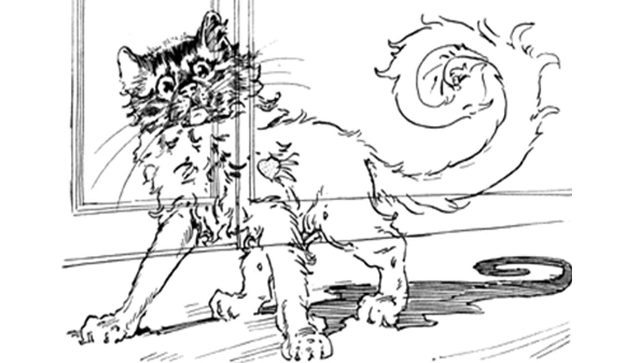 glasscat2.png