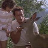 commando alyssa milano arnold schwarzenegger deer
