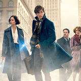 Fantastic Beasts and Where To Find Them Hero