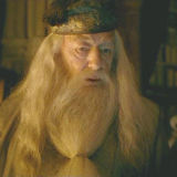 Harry Potter and Dumbledore